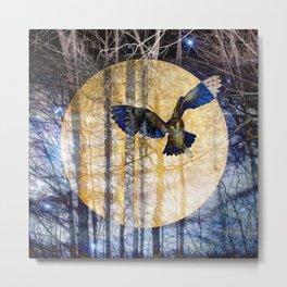 Owl Moon and Starlight Metal Print