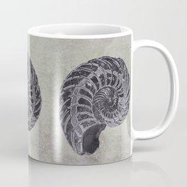 Ammonite study Coffee Mug