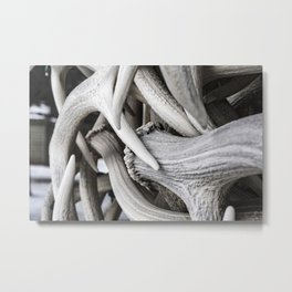 The Antler Arches of Jackson Hole Metal Print