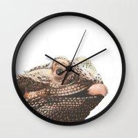 transparent Wall Clocks featuring Transparent Beardie by Megan Coyne