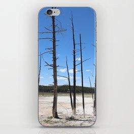 Surreal trees iPhone Skin