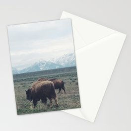 Roaming Buffalo Stationery Cards