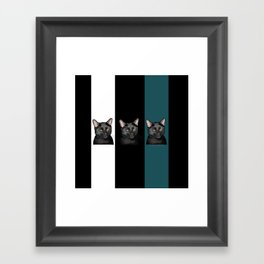 Three Black Cats with a White/Black/Green Background Framed Art Print