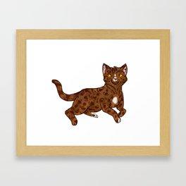 Bengal Kitty Framed Art Print