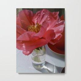 Single Blossom Flower South Kensington, London 2009 Metal Print