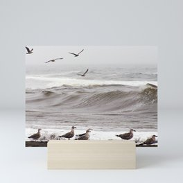 Seagulls and the Surf Mini Art Print