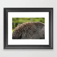 Wet Fur Framed Art Print