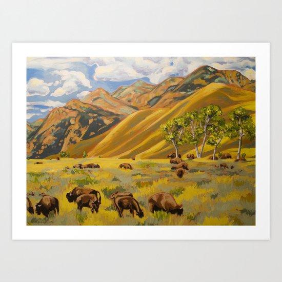Susan's Bison Art Print
