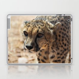 African Cheetah Laptop & iPad Skin