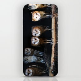 Owls the family iPhone Skin