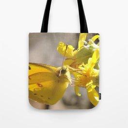 Sulphur Butterfly Imbibing Tote Bag