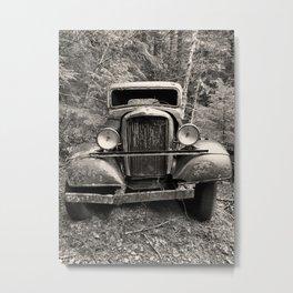 Lonely Metal Print