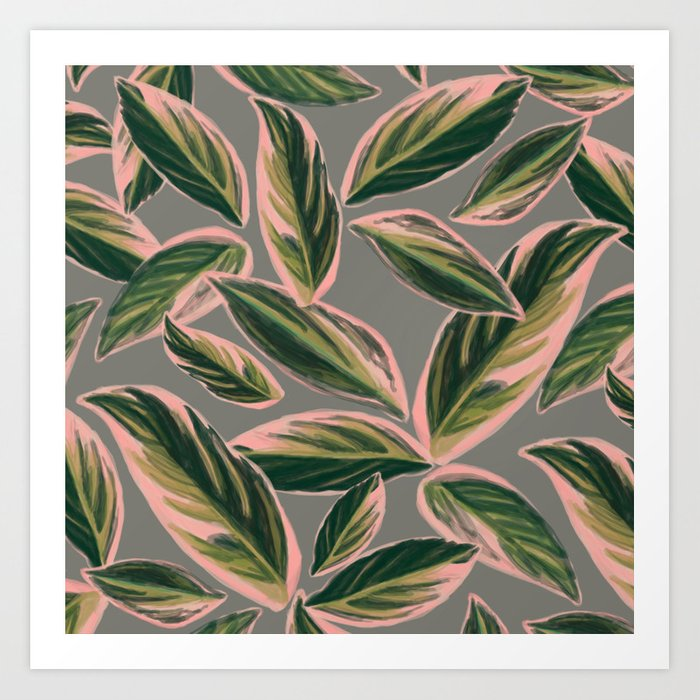 Calathea Leaves Pattern- Pink Green Gray Art Print