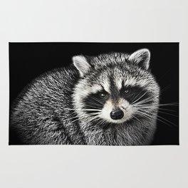 A Gentle Raccoon Rug