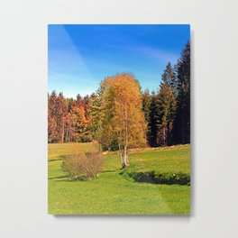 Tree in springtime scenery | landscape photography Metal Print
