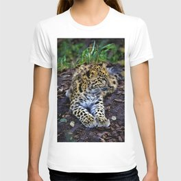 Endangered Amur Leopard Cub by Reay of Light T-shirt