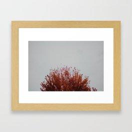 Autumnal Tree Framed Art Print