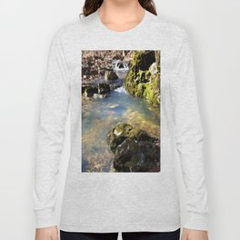 Alone in Secret Hollow with the Caves, Cascades, and Critters, No. 8 of 20 Long Sleeve T-shirt