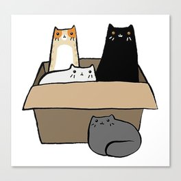 Cats in a Box Canvas Print