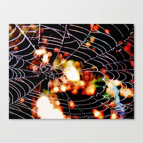 spider love Canvas Print