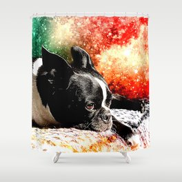 Boston Terrier (Jake) Shower Curtain