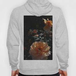Peaches & Creme Hoody