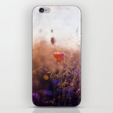 Mohntag am Freitag iPhone & iPod Skin