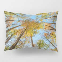 Kaleidoscope - Fall Colors in Trees of Great Smoky Mountains Pillow Sham