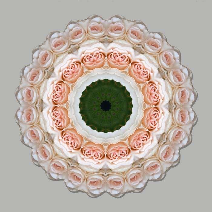 Ring of Roses Comforters