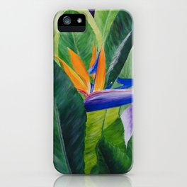 Bird of Paradise Painting by Teresa Thompson iPhone Case