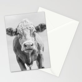 Animal Photography | Cow Portrait Minimalism | Farm animals | black and white Stationery Cards