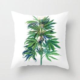Cannabis Scientific Illustration Throw Pillow