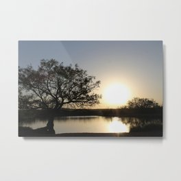 Roswell Pond Metal Print