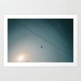 Shoes on a wire Art Print