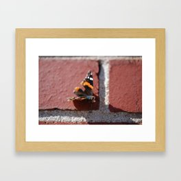 Butterfly :: Brick in the Wall Framed Art Print