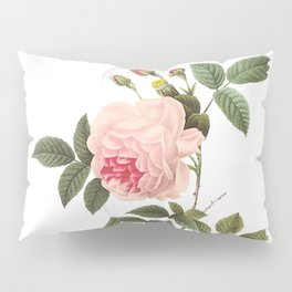 Vintage Pink Rose [04] Pillow Sham