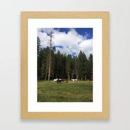 montana les chevaux Framed Art Print