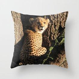 Cute little baby cheetah | Wildlife travel photography | Fluffy wall art Throw Pillow