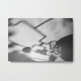 Flowerpot in the sun Metal Print