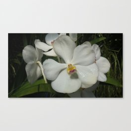 White Diamond Canvas Print