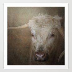 Longhorn cow Art Print