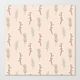 Cotton Stalks Canvas Print