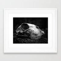 animal skull Framed Art Prints featuring animal skull by Jo Beerens