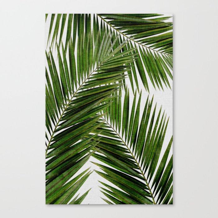 Palm Leaf III Leinwanddruck