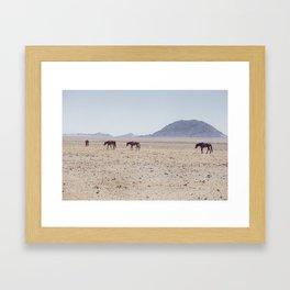 Horses of Namibia Framed Art Print