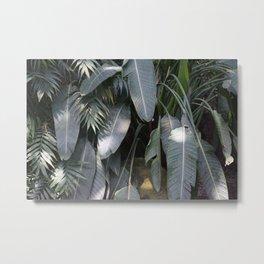 palmehaus Metal Print