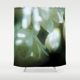 light and shadow 2 Shower Curtain