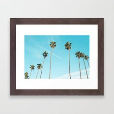 Palm Tree Sunshine Framed Art Print