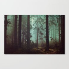 Shadows in the morning mist  Canvas Print