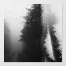 What Lies Down Hidden Rain Drenched Paths Canvas Print